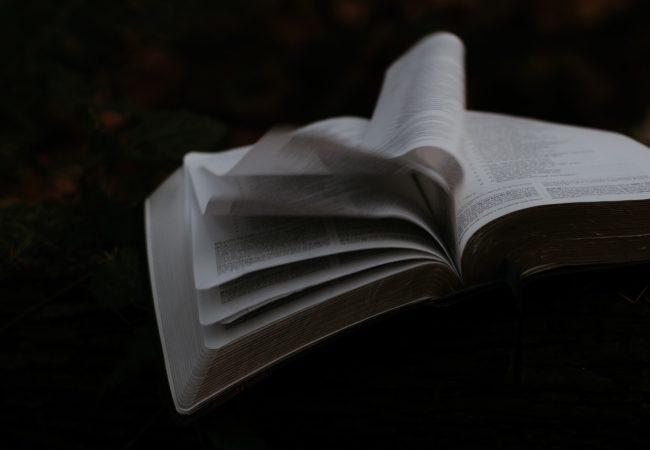 Particularitățile unui text poetic interbelic de Tudor Arghezi (lecție video)