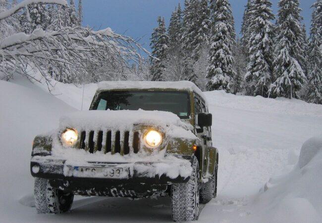 jeep sau gip